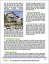 0000074768 Word Templates - Page 4