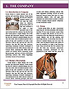 0000074782 Word Templates - Page 3