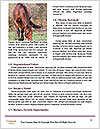 0000074782 Word Templates - Page 4