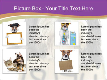 0000074783 PowerPoint Template - Slide 14