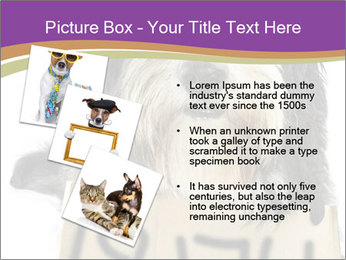0000074783 PowerPoint Template - Slide 17