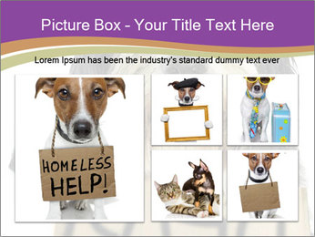 0000074783 PowerPoint Template - Slide 19