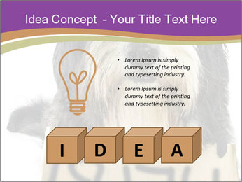 0000074783 PowerPoint Template - Slide 80