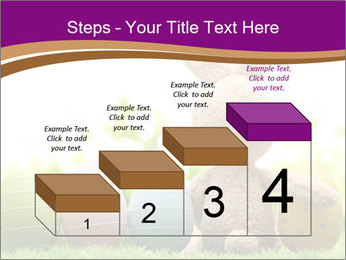 0000074796 PowerPoint Templates - Slide 64