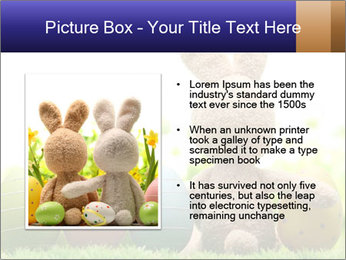 0000074798 PowerPoint Template - Slide 13