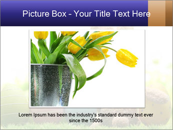 0000074798 PowerPoint Templates - Slide 15