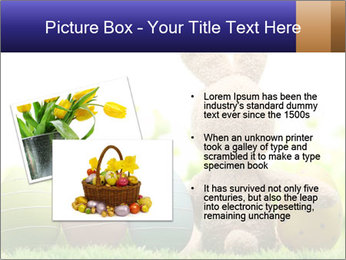 0000074798 PowerPoint Template - Slide 20