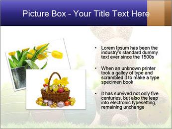 0000074798 PowerPoint Templates - Slide 20