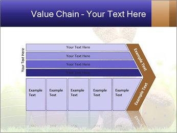 0000074798 PowerPoint Templates - Slide 27