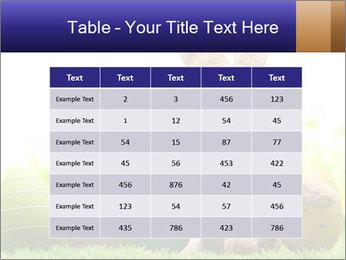 0000074798 PowerPoint Templates - Slide 55