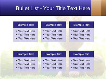 0000074798 PowerPoint Templates - Slide 56