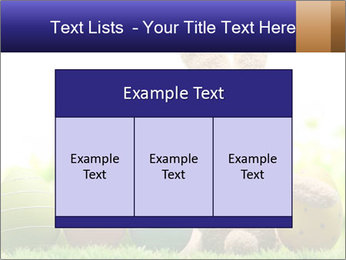 0000074798 PowerPoint Templates - Slide 59