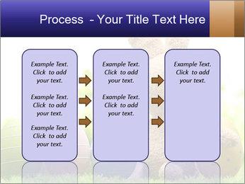 0000074798 PowerPoint Templates - Slide 86