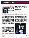 0000074801 Word Template - Page 3