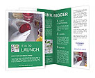 0000074803 Brochure Templates