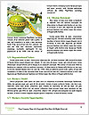 0000074804 Word Templates - Page 4