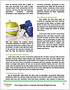 0000074805 Word Templates - Page 4