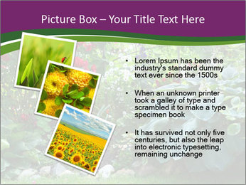 0000074809 PowerPoint Templates - Slide 17