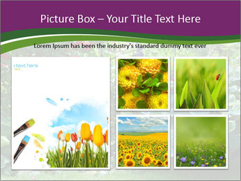 0000074809 PowerPoint Templates - Slide 19