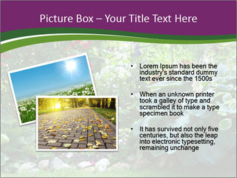 0000074809 PowerPoint Templates - Slide 20