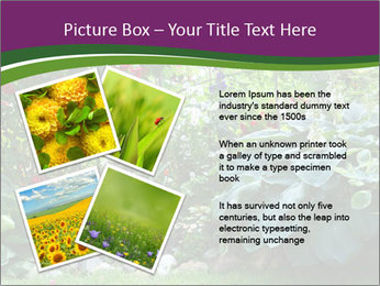 0000074809 PowerPoint Templates - Slide 23