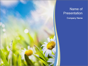 0000074812 PowerPoint Template - Slide 1