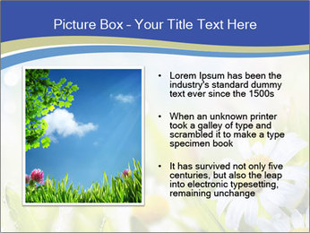 0000074812 PowerPoint Template - Slide 13