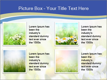 0000074812 PowerPoint Template - Slide 14