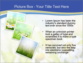 0000074812 PowerPoint Template - Slide 17