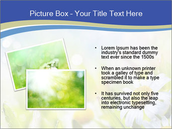 0000074812 PowerPoint Template - Slide 20