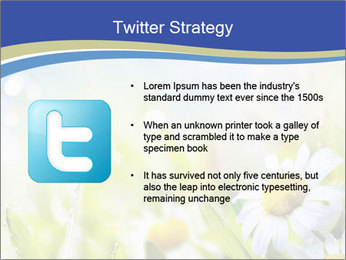 0000074812 PowerPoint Template - Slide 9