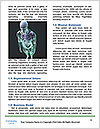 0000074815 Word Templates - Page 4