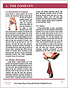 0000074816 Word Templates - Page 3