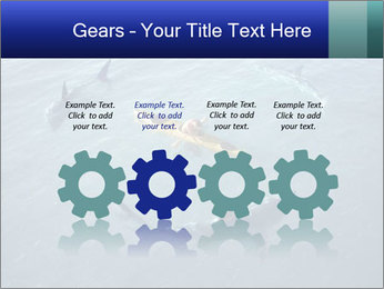 0000074820 PowerPoint Template - Slide 48