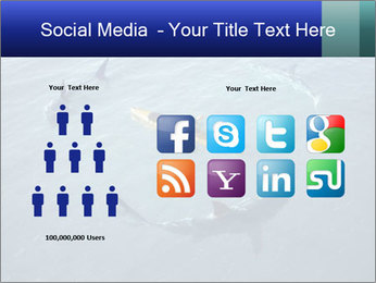 0000074820 PowerPoint Template - Slide 5