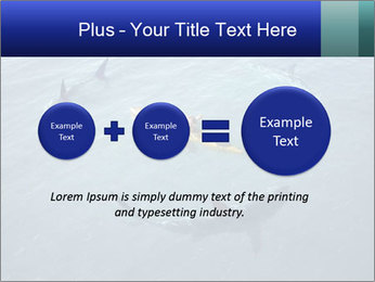 0000074820 PowerPoint Template - Slide 75