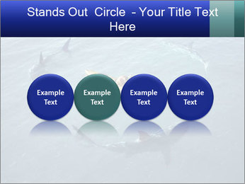 0000074820 PowerPoint Template - Slide 76
