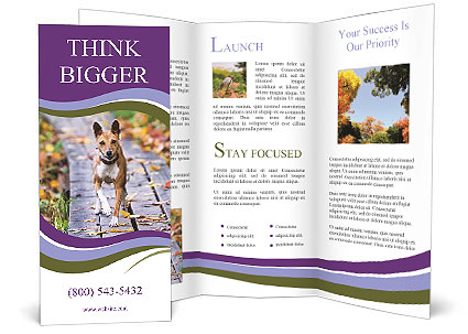 0000074837 Brochure Templates