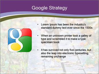 0000074837 PowerPoint Templates - Slide 10