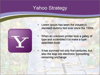 0000074837 PowerPoint Templates - Slide 11
