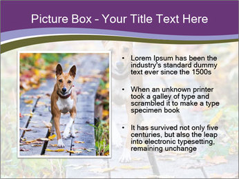 0000074837 PowerPoint Templates - Slide 13
