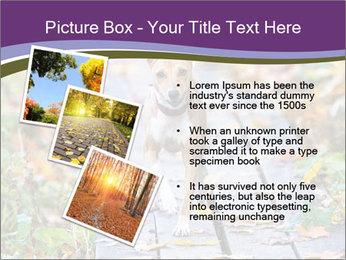 0000074837 PowerPoint Templates - Slide 17