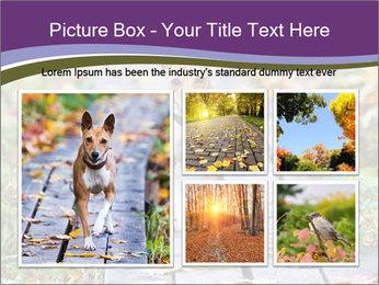 0000074837 PowerPoint Templates - Slide 19