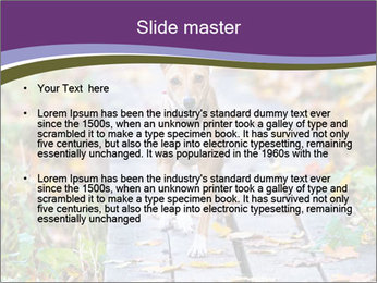 0000074837 PowerPoint Templates - Slide 2