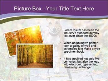 0000074837 PowerPoint Templates - Slide 20
