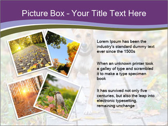 0000074837 PowerPoint Templates - Slide 23
