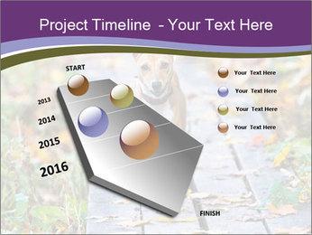 0000074837 PowerPoint Templates - Slide 26