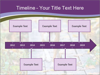 0000074837 PowerPoint Templates - Slide 28