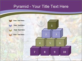 0000074837 PowerPoint Templates - Slide 31