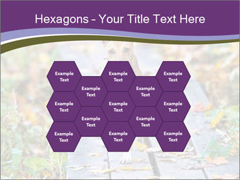 0000074837 PowerPoint Templates - Slide 44